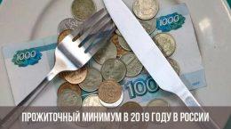 Прожиточный минимум в РФ в 2019 году