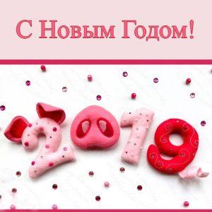2019 год Свиньи поздравления