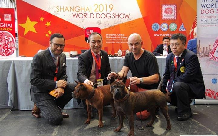 World Dog Show в 2019 году