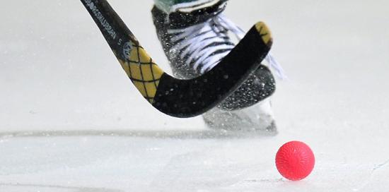 Хоккей с мячом 2018-2019 года