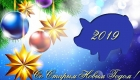 Свинка на открытке на Старый Новый Год 2019