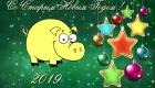 Веселая свинка на Старый Новый Год 2019