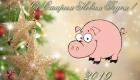 Розовая свинка на Старый Новый Год 2019
