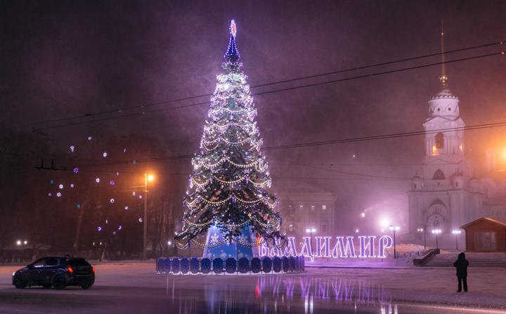 Новогодние елки Владимира