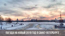 Погода на Новый 2019 год в Санкт-Петербурге
