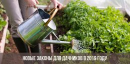 Новый законы для дачников с 2019 года