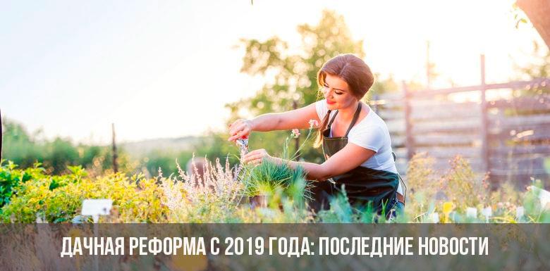 Дачная реформа 2019 года