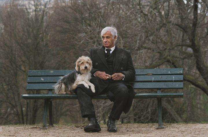 Седой мужчина с собакой в парке