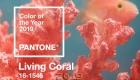 Цвет года 2019 - живой коралл