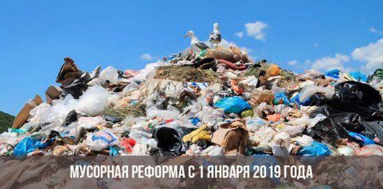 Мусорная реформа с 1 января 2019