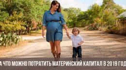 На что потратить материнский капитал в 2019 году