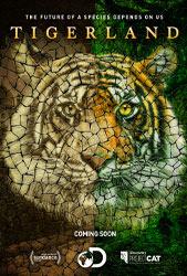 Спасти тигра - фильм 2019 года