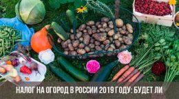 налог на огород в россии 2019 будет ли