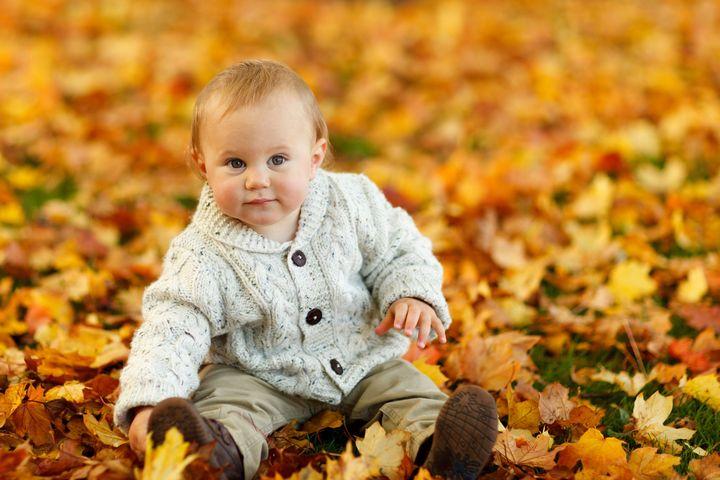 Ребенок сидит в желтых листьях