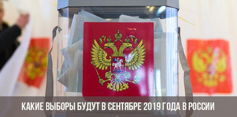 Выборы в России в 2019 году