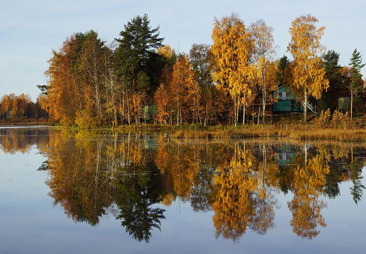 Осень в Ленинградской области
