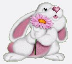 кролик с розовым цветком