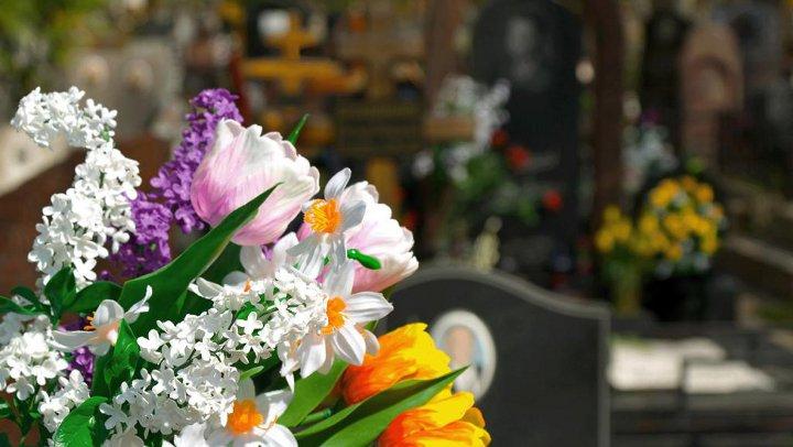 цветы на фоне могилок