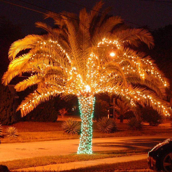 Абхазия на Новый год
