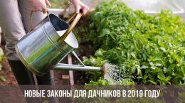 Бабье лето в 2019 году в России: когда начинается